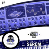 Vandalism Shocking House For Serum 2 [Synth Presets]