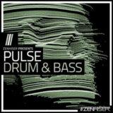 Zenhiser Pulse: Drum and Bass [WAV, MiDi]