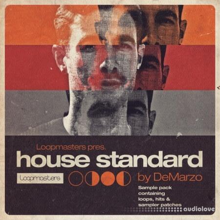 Loopmasters DeMarzo House Standard