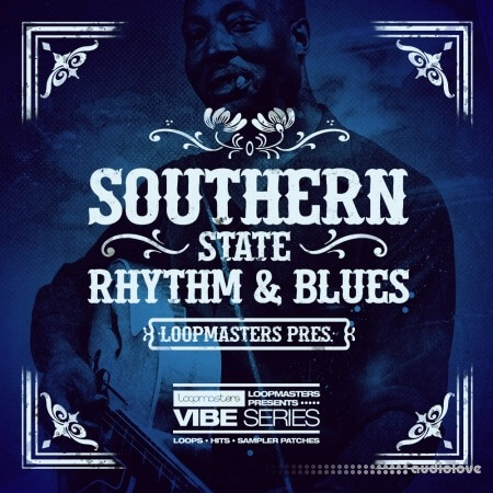 Loopmasters Vibes Vol.5 Southern State Rhythm And Blues