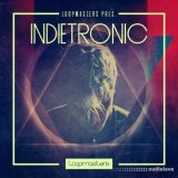 Loopmasters Indietronic [MULTiFORMAT]