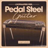 Loopmasters Pedal Steel Guitar [MULTiFORMAT]