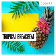 Concept Samples Tropical Breakbeat [WAV]