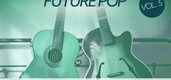 Baltic Audio Essential Chart Guitars Vol.5 [WAV]